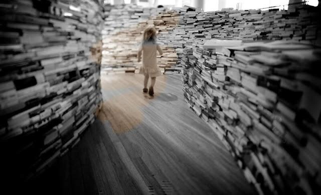 灌木迷宮,雨木散文故事