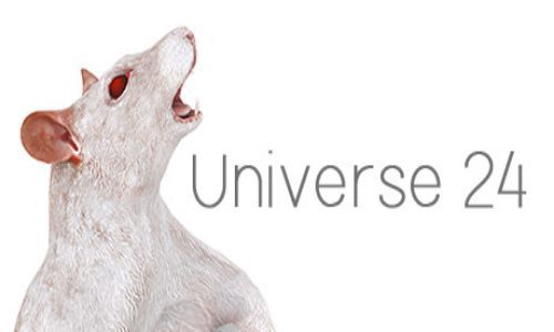 Download Universe 24 Free For PC