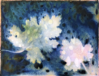 Wet cyanotype -Sue Reno_Image 508