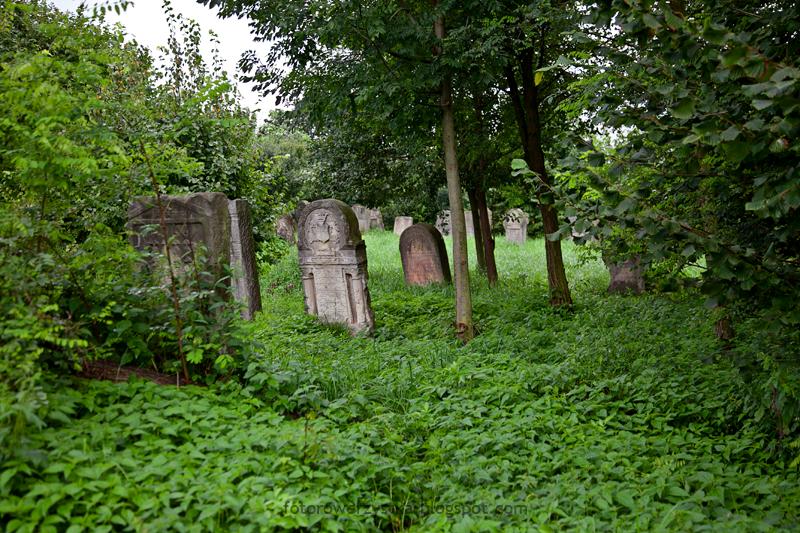 Bodzentyn, świętokrzyskie, góry, Świętokrzyski Park Narodowy, kirkut, cmentarz żydowski