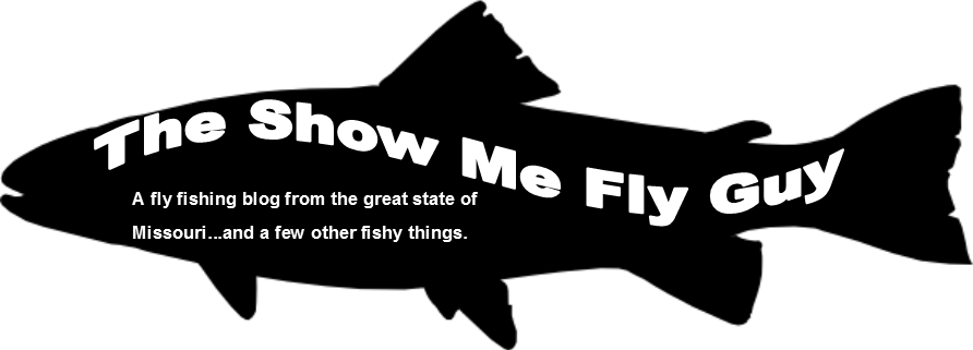 The Show Me Fly Guy