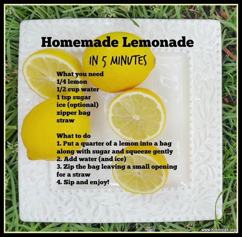 Homemade Lemonade In 5 Minutes