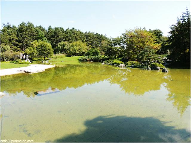 Jardín Japonés del Jardín Botánico de Montreal: Lago