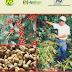 Libros%gratis%Manual: Manejo integrado del cafe.pdf