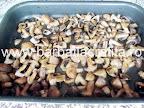 Ciuperci la cuptor cu usturoi preparare reteta - tava scoasa din cuptor