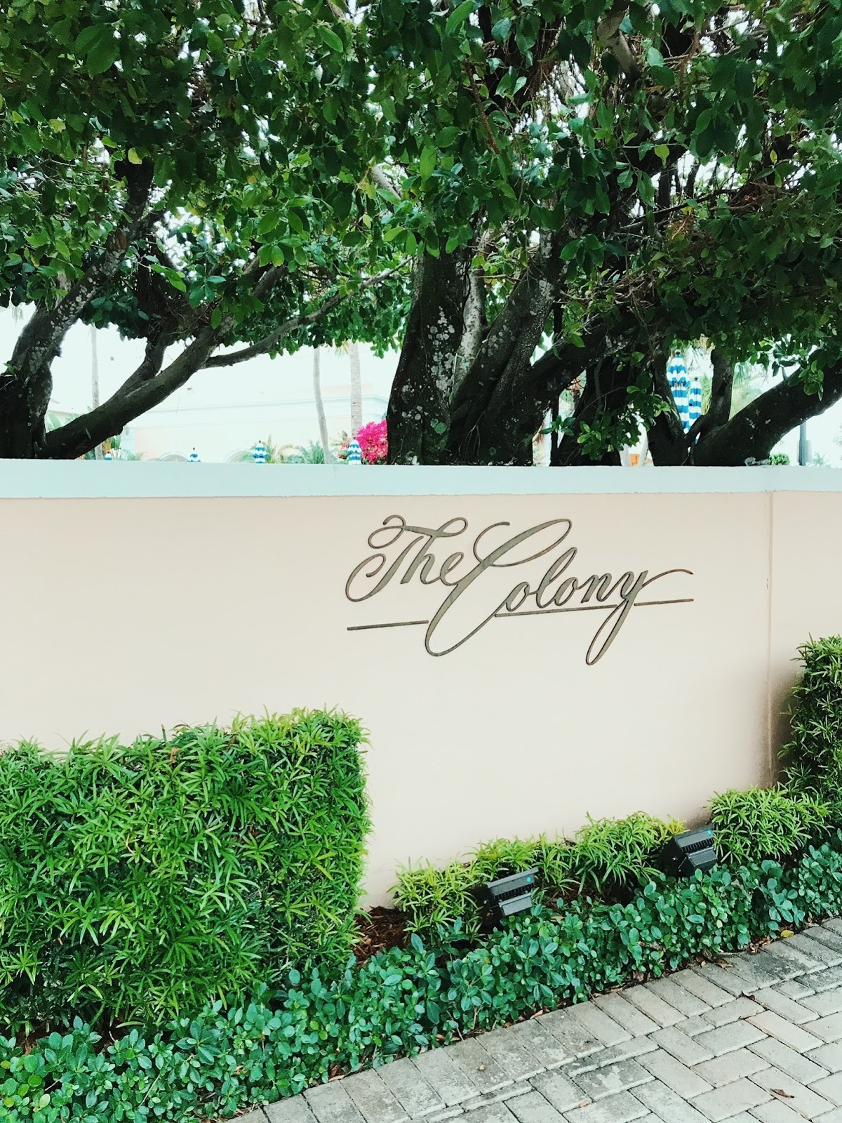 Palm Beach Adventure with VISIT FLORIDA   Lucky Day   Orlando ...