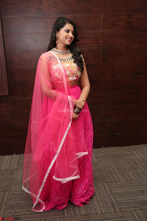 Geethanjali sizzles in Pink at Mixture Potlam Movie Audio Launch 040.JPG