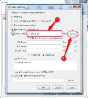 cara merubah ip address pada firefox 12