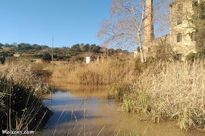 Represa del riu Gaià, al Catllar