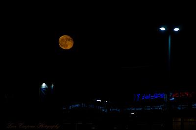 Luna-Moon-Hold-Lua-Σελήνη