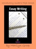 High School Essay Writing