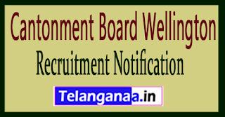 Cantonment Board Wellington Recruitment Notification 2017