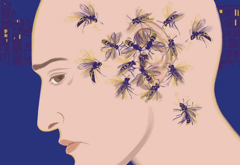 Alasan Nyamuk Suka Terbang di Area Telinga