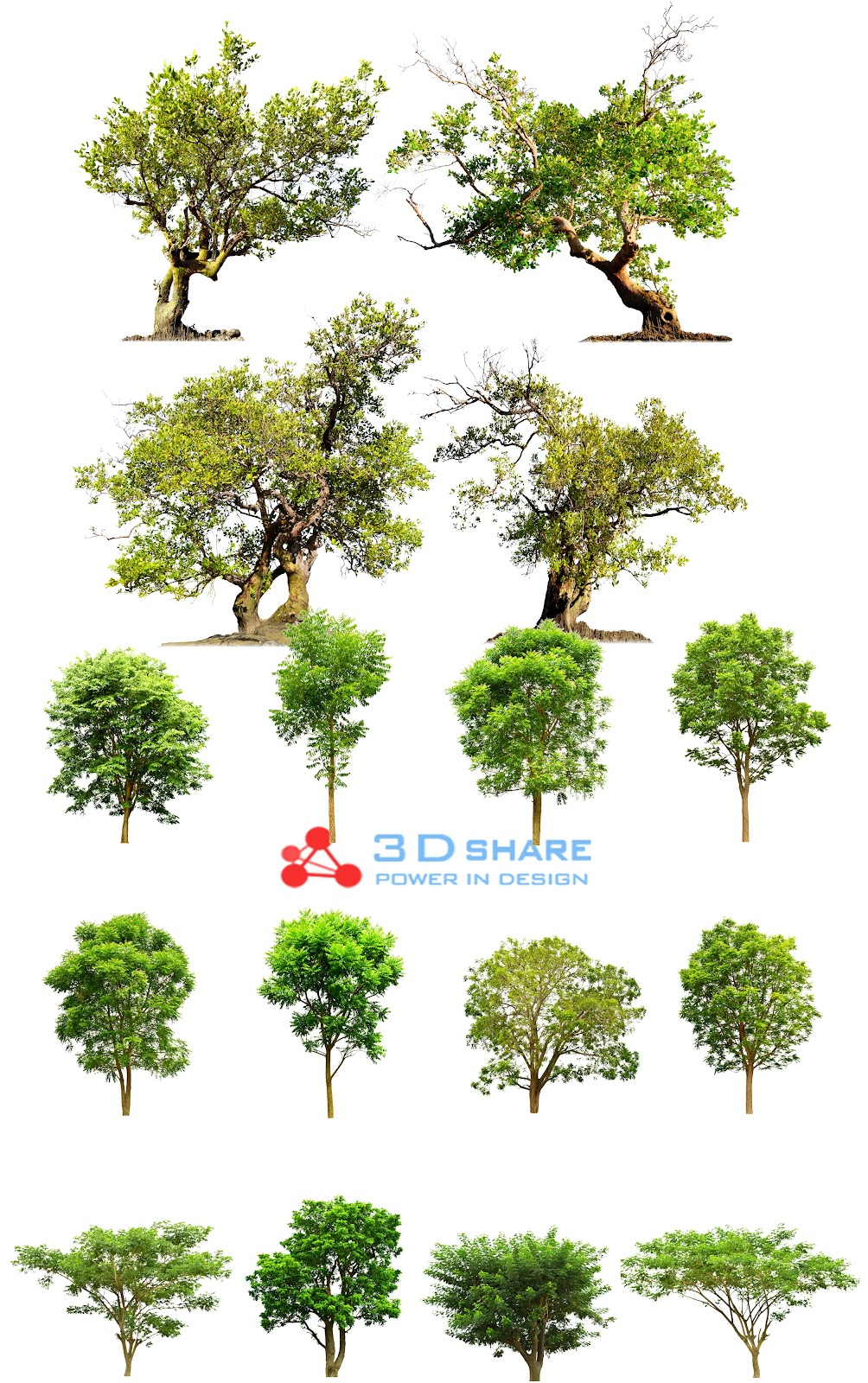 [photoshop][tree] part 2
