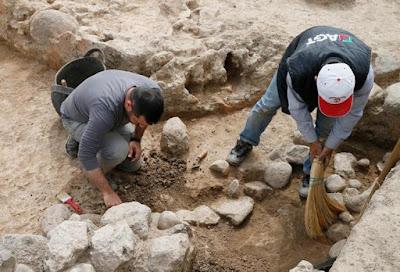 Σπόροι σταφυλιών ηλικίας 5.000 ετών σε αρχαιολογικό χώρο της Σμύρνης