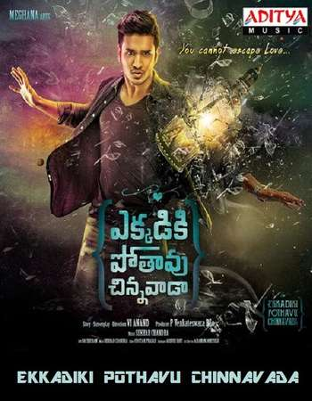 Ekkadiki Pothavu Chinnavada 2016 UNCUT Hindi Dual Audio HDRip Full Movie Download