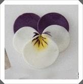 Polimer Kilden Menekşe Çiçeği Yapımı, Resimli Açıklamalı