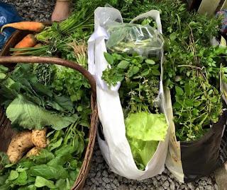 Feira Agroecológica e de Pequenos Produtores