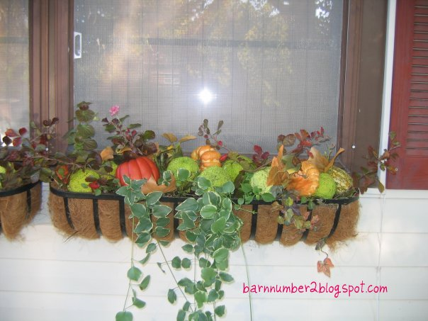 Barnnumber2 : Fall Window box decor