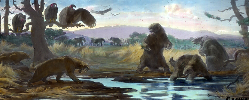 Global Wahrman The Deeper Meaning Of The La Brea Tar Pits