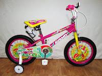 Sepeda Anak Avand Dino Girl 16 Inci