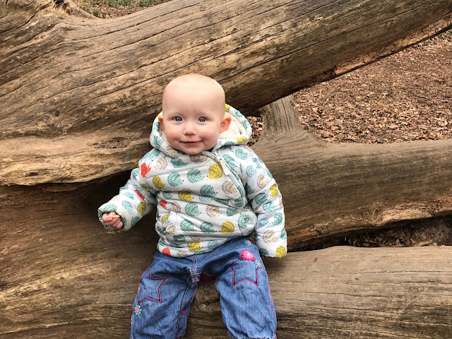 A 13 month old baby girl sitting on a fallen tree in a hedgehog marks and spencers coat and jeans