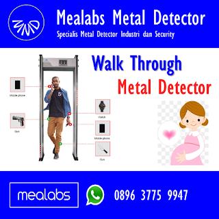 Metal Detector untuk Ibu Hamil