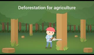 Deforestation for Agriculture, pengertian deforestation for agriculture, apa itu deforestation for agriculture ?, deforestation for agriculture yang menyebabkan kerusakan bumi