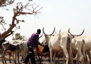 fulani herdsman jailed