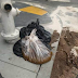 Awe Crap! San Francisco Reports Record Amounts Of Human Feces In Streets