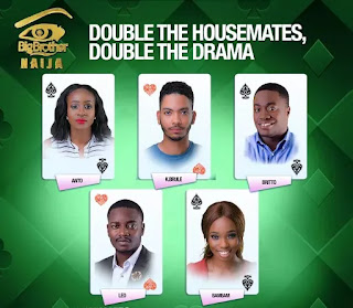 Big Brother Naija 2018 Housemates