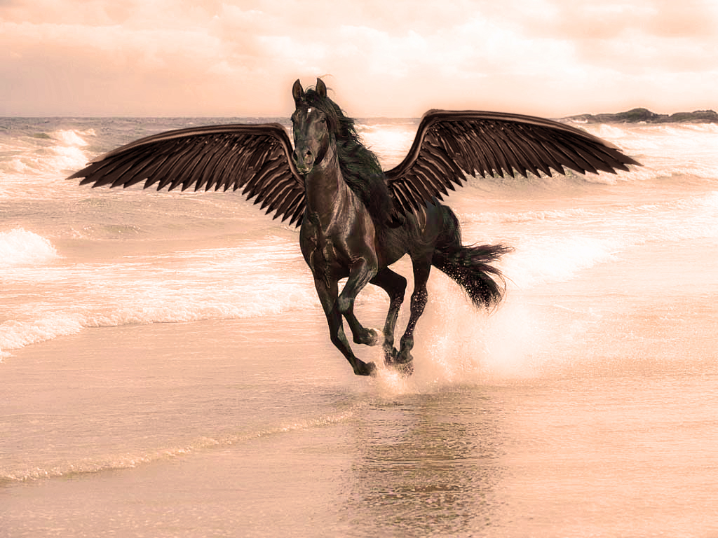 Best   Wallpaper Horse Water - horse-+(1)  You Should Have_705795.jpg