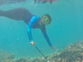 spot snorkeling krakatau