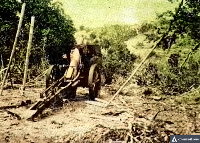 "Original caption:  Jap artillery in the vicinity of Aga.  Image source: ""The Angels: a History of the 11th Airborne Division, 1943-1946."""