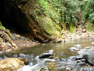 Bat Cave Rio Viejo, Puriscal