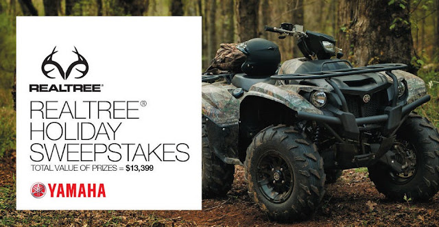 THE STAGE REALTREE HOLIDAY SWEEPSTAKES