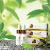 Harga Produk Royal Sweetener Stevia (RSS)