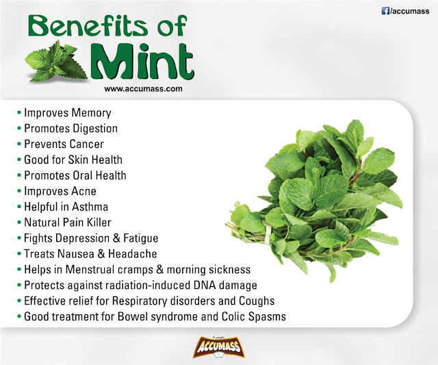 Health Tips for Living Healthy - Benefits of Mint