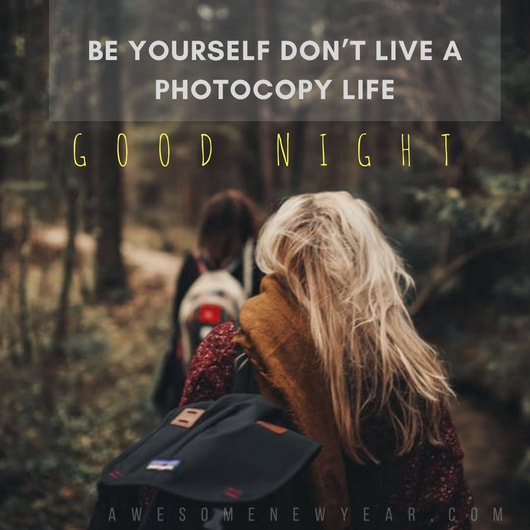 Amazing Good Night Quotes with Images that Will Inspire You