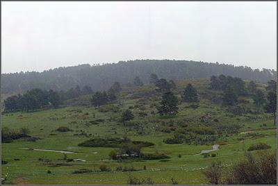 Lluvia sobre el Arroyo Del Rollo (Villar Del Cobo)