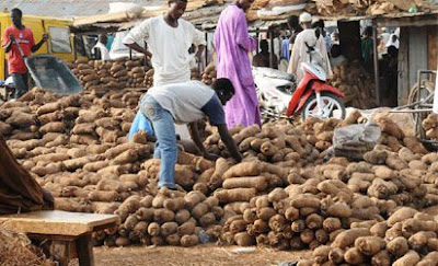 Man dies in Enugu because of '1' tuber of Yam.