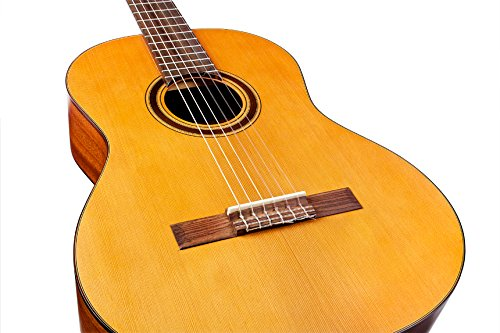 buy guitar strings online