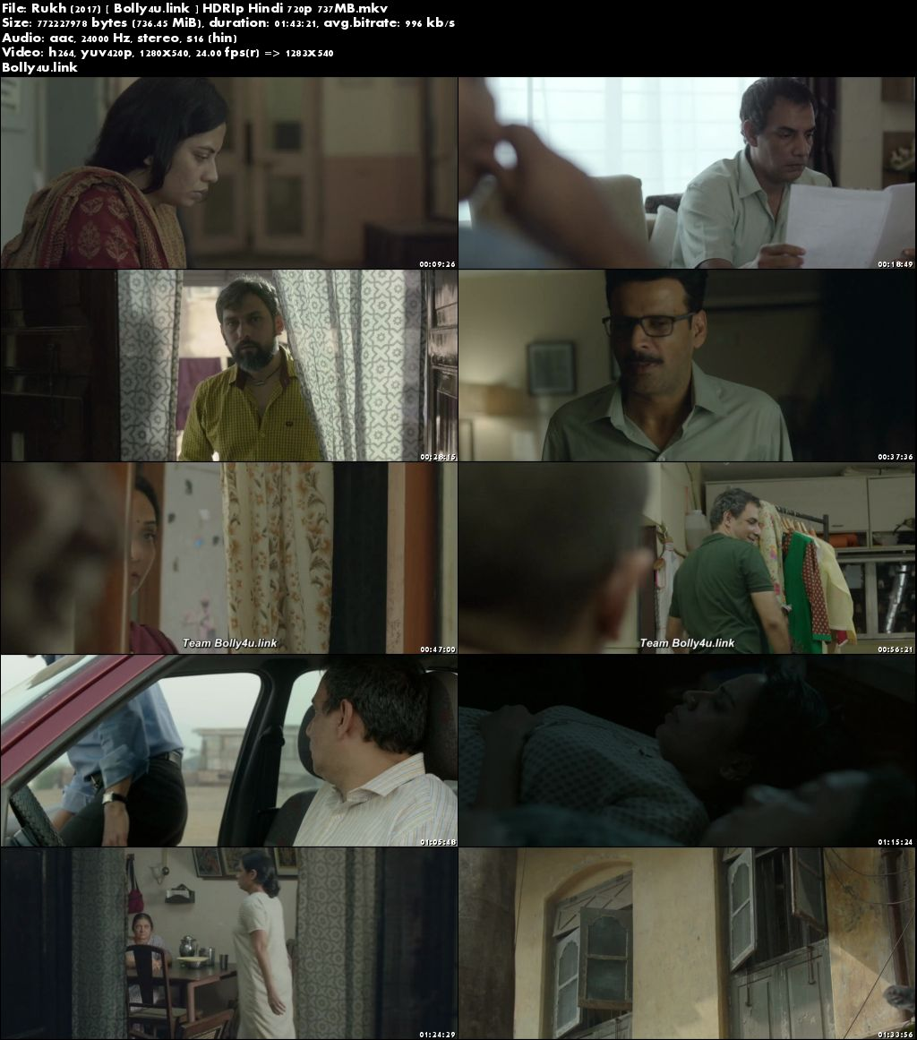 Rukh 2017 HDRip 300MB Full Hindi Movie Download 480p