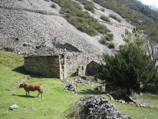Primeras casas de Besapie