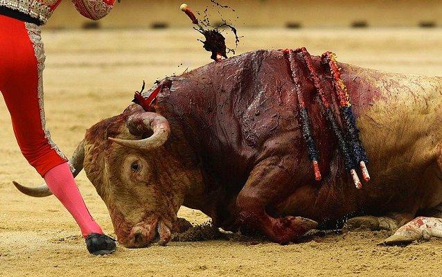La Policía investiga los tuits que se burlaban de la muerte del torero Víctor Barrio