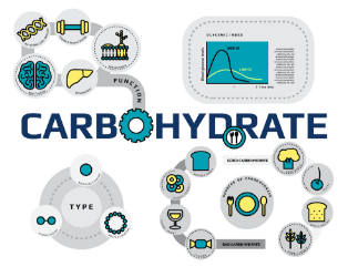 Carbohydrate Definition Nutrition