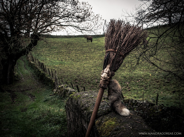 Aker Dantzaria Witch Fox Skull Broomstick Besom Broom by Victoria Francés