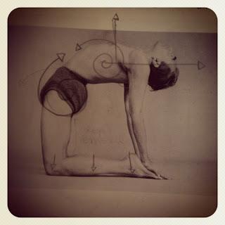 sadhana el sendero del yoga ustrasana postura del