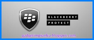Cara mengetahui posisi teman melalui pin blackberry Blackberry Protection.jpg