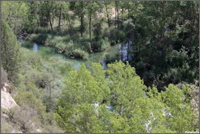 Las Juntas. Desembocadura del Río Escabas en el Río Guadiela. Vista de detalle